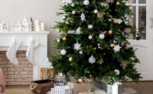 Kako u pet sekundi znati kupujete li svježe božićno drvce?