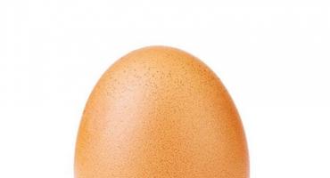 Ne bacajte ljuske jaja jer od njih možete napraviti prirodne lijekove koji podižu razinu kalcija!