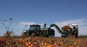 Podravka želi proizvodnju i otkup šljiva, malina, paprika, rajčice i u središnjoj Bosni
