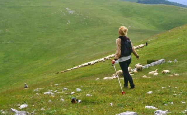 Priča iz Hercegovine: Čobanice