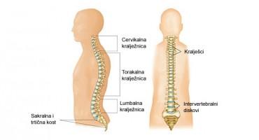 Uzroci bolova u srednjem dijelu kralježnice - Torakalni sindrom