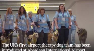 Ponuda aerodroma u Škotskoj: Milujte i mazite pse, izbacite stres
