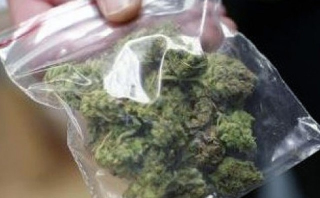 Na graničnom prijelazu Klek pronađeno gotovo 14 kilograma marihuane