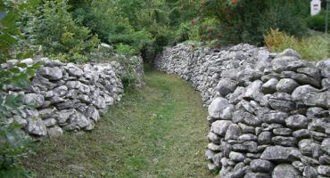Miljenka Koštro: Didova stina