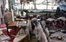 Ubijene 63 osobe u napadu bombaša samoubojice na svadbi u Afganistanu