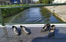 Hercegovina.info u Švedskoj: Pogledajte neke od znamenitosti Malmöa