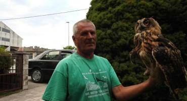 U dolini rijeke Neretve: Spasili su najveću europsku sovu