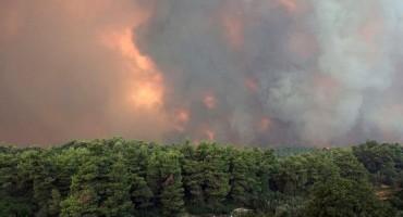 Amazonska prašuma u plamenu. Svijet ide prema katastrofi