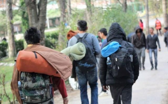 GRUDE: Privedeno šest migranata