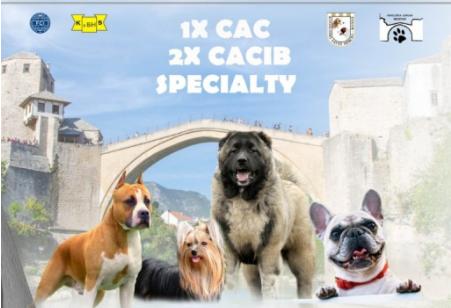 Državna i međunarodna izložba pasa u Mostaru