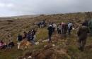 FOTO/ Tomislavgrad: Školarci posadili 500 sadnica crnoga bora