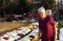 OPG Stipić: Za Svi Svete nudimo domaće lončanice – šareno i mirisno cvijeće uzgojeno s puno ljubavi