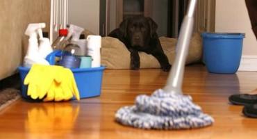 Što je važno za održavanje higijene doma?