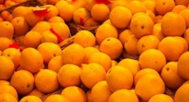 Proizvođači mandarina u novim problemima