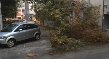 Mostar: Zabilježene poteškoće u prometu, materijalne štete, četiri intervencije uklanjanja stabala s kolnika
