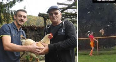 Nagli obrat u slučaju 'kokoš': Vlasnik je nakon tri dana pronašao živu