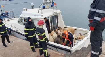 Brod s 14.000 ovaca se prevrnuo, spasilačka akcija u tijeku