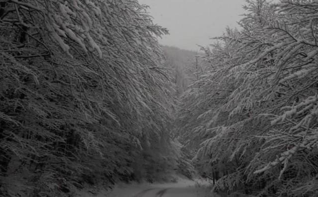 Pogledajte predivne sniježne prizore s Velebita