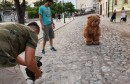 DINO ŠOŠE Mostar je za mene, jedna od onih stvari koje se podrazumijevaju u životu
