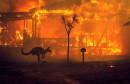 AUSTRALIJA Megapožar pod kontrolom nakon više od 10 tjedana!