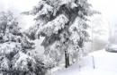Evo gdje će padati snijeg ovih dana