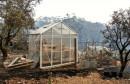 ČUDO U AUSTRALIJI Požar joj uništio kuću, a vrt je ostao netaknut
