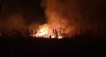 VELIKI POŽAR NA PAGU Vatrogasci se bore od popodneva