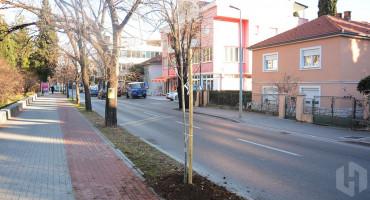 MOSTAR U tijeku obnavljanje postojećih i sadnja novih stabala!