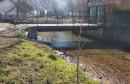 Mostarci posadili platane uz rijeku Radobolju