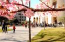 Pogledajte kako izgleda sunčana nedjelja u gradu na Neretvi
