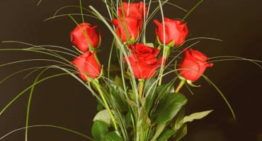 Turska izvozi 60 milijuna ruža uoči Valentinova