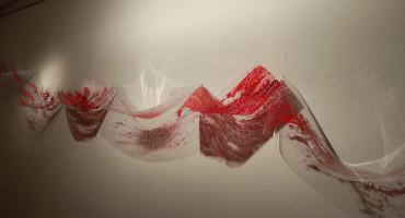ŠIROKI BRIJEG Otvorena izložba 'Sedam mora' autorice Renate Papišta