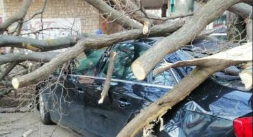 Vjetar oštetio više automobila u Mostaru