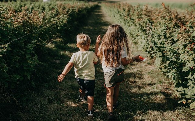 Djeca ne idu u prirodu i ne znaju kako izgleda drveće i miriše cvijeće