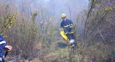 POŽAR PRIJETIO KUĆAMA Više od deset vatrogasaca je bilo na terenu