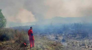 Požar u Parku prirode 'Hutovo blato' i dalje aktivan