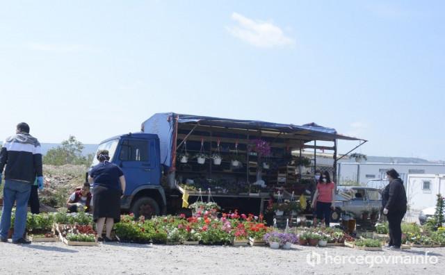 GRAĐANI POHRLILI PO RASADE Najviše se prodaju rajčica i paprike, cvijeće ide odlično