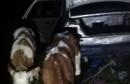 U BiH pokušao prokrijumčariti dva teleta koja je vozio u automobilu