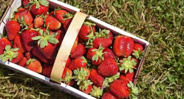 Hercegovac originalnom porukom pozvao ljude da kupe jagode