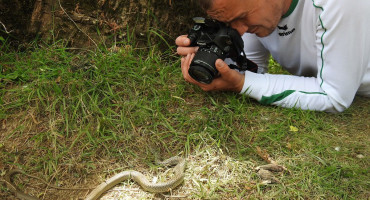 FLORA I FAUNA Uz Hercegovačke rijeke pronađene rijetke i ugrožene vrste