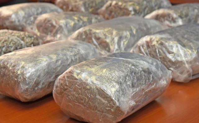 U autobusu za Imotski pronađeno 16 kilograma marihuane