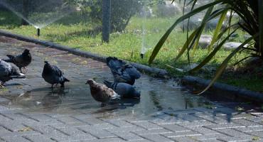 PROMJENA VREMENA Stižu kiša i zahlađenje