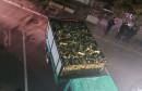 Posušak ispod drva prevozio više od 40 tisuća kutija cigareta