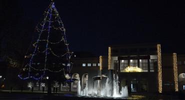 Okićen veliki bor na Trgu hrvatskih velikana u Mostaru
