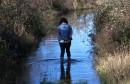 NABUJALA TREBIŠNJICA Kad izlije rijeka, Đokići žive na otoku