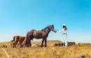 Jeste li znali da u Livnu možete vidjeti više od 600 divljih konja u prirodi?