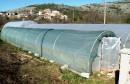 Obitelj Bojbaša dobar primjer plasteničke proizvodnje u Hercegovini