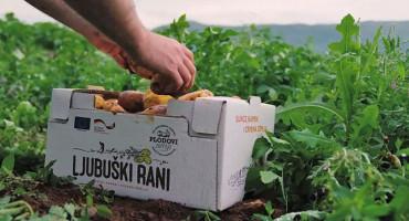 LJUBUŠKI RANI ĆE OPSTATI Proizvođači zajedničkim snagama protiv uvoznog krumpira