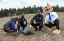 Povodom 25. rođendana: Kompanija R&S na Bjelašnici i Igmanu zasadila 2500 sadnica drveća