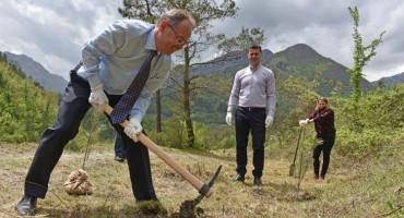 GO GREEN Tisuću stabala za Jablanicu